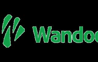 wandoo pożyczka