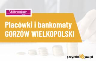 millennium gorzów wielkopolski